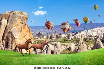 Two horses running on green grass near mushroom mountains in sunny day in Cappadocia, Turkey. Hot air ballooning is most popular attraction in Kapadokya.