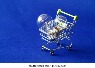 two incandescent lamps in a shopping basket, glass ordinary electric lamps