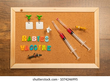 Two injection needles for rabies vaccine with three dog model