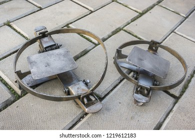 Two iron traps lie on the stone floor, cocked
