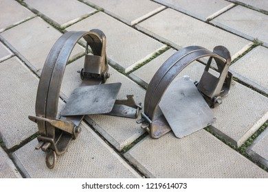 Two iron traps lie on stone floor, not cocked