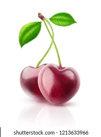 Two isolated berries. Pair of heart shaped cherry fruits on a stem isolated on white background