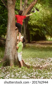 two kids helping each other to climb on tree and reaching for shoes on branch
