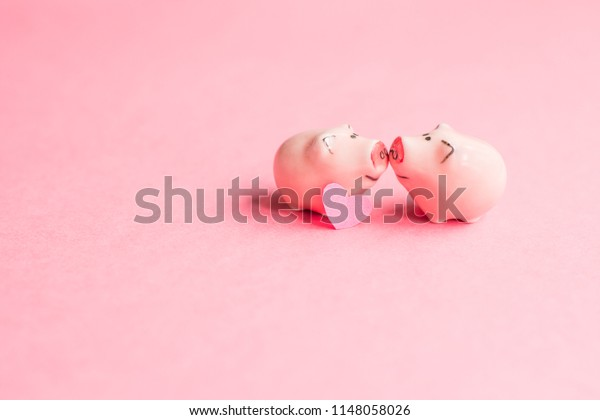two kissing pigs, Valentine's day concept