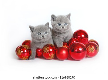 Two kittens with Christmas balls on a white background.