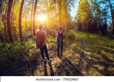 Two ladies walking on a road in a forest at sunny day