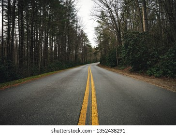 Two lane open road running through the forest in North Carolina with big tall trees on each side as the road goes off into the distance