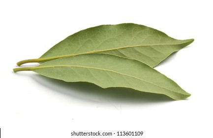 Two leaves of bay leaf on the white