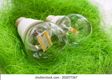 two LED light bulb E27 with different chips in large transparent glass flasks on artificial grass