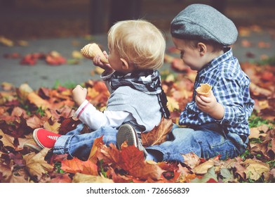 Two little boys in autumn leaves/toned photo