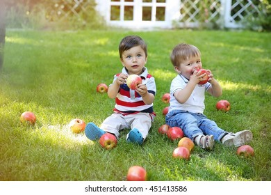 two little boys sitting on the grass in the garden and eat apples