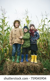 Two little brothers and sister standing in corn field and smiling outdoors