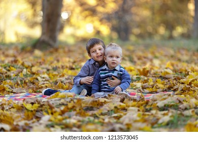 Two little brothers sitting on maple leaves in the park.