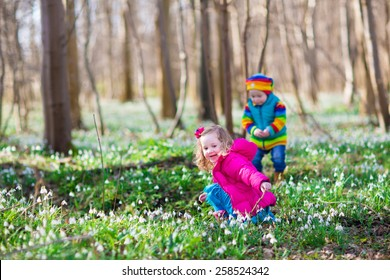 two little children, cute toddler girl and funny baby boy, brother and sister, playing in a sunny forest with beautiful spring snowdrop flowers