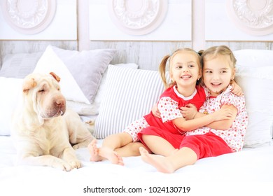 Two little children are hugging and laughing in pajamas. Dog. The concept of childhood, lifestyle, game.