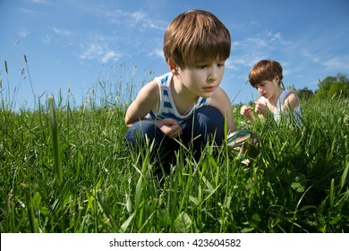 Two Little Curious Boys Exploring The Beauty Of Nature On Green Field At Spring Time