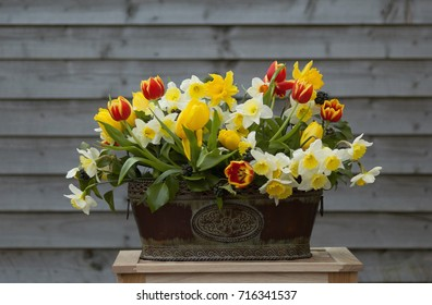 Two little ducklings on a front of spring bouquet of tulips and daffodils