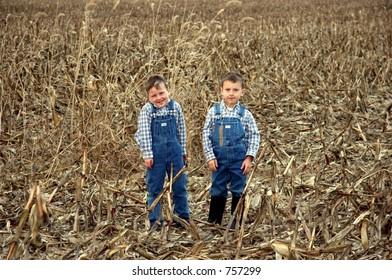 Two little farm boys in harvested cornfield.  One boy munching on wheat.