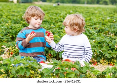 Two little friends having fun on strawberry farm in summer. Feeding each other with organic berries and spending time together.