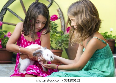 Two little girl play with a rabbit.Two little girl with a bunny