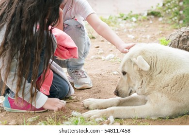 Two little girl stroking a big white lying dog