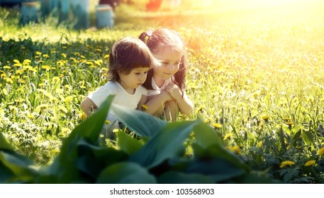 Two little girls playing in the meadow with dandelions