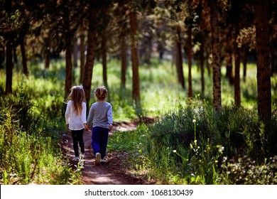 Two little sisters walking and playing on the road in countryside on a warm summer sunset. Cute little girls. Back view