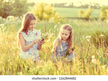 Two little sisters weave wreaths of flowers on a sunny meadow