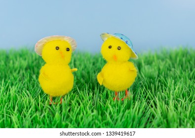 Two little toy chickens with funny hats in the meadow