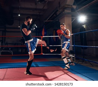 Two male adult kickboxers training kickboxing in the ring at the health club