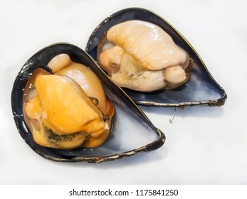 Two male and female cooked mussels of high quality on white background