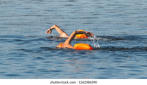Two male swimmers are swimming outdoors in the Long Island Sound with oange floatation devices floating behind them for safety.