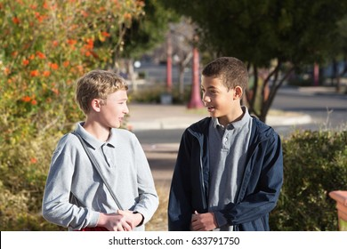 Two male teenage friends in conversation together outdoors
