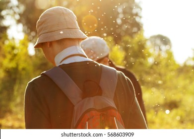 two male tourists go through the tall grass in the forest surrounded by midges in the morning sun