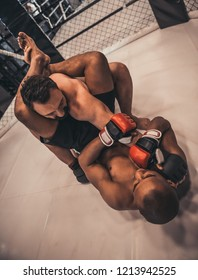 Two men in gloves and shorts are fighting in cage using grappling