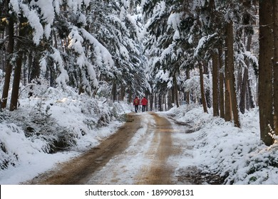 two men in red suits walking along the snowy forest road - Shutterstock ID 1899098131