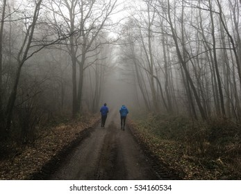 Two men running in the fog on a beautiful morning.