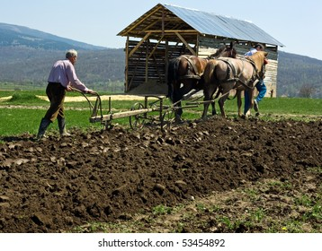 Two men working on the field with horses