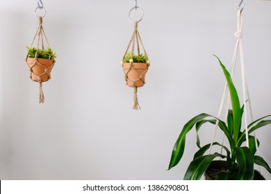 Two mini macrame plant hangers made out of jute twine are being held up by hooks. Fake plants are in the ceramic pots. Beside them is an average sized cotton macrame hanger.