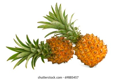 Two mini pineapples on a white background