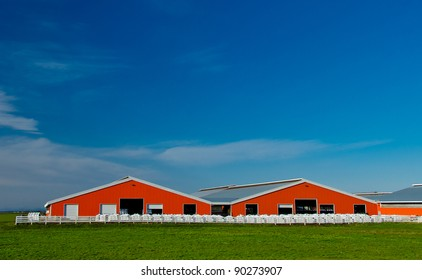 Two modern red barns on the farm lands