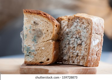 Two moldy bread portions, slices of food with toxic mold or mould with plenty colored spores lying on wooden board with blurred background. Nobody, horizontal orientation.