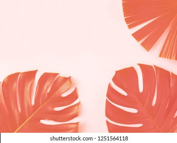 Two monstera leaves and one palm leaf. Trendy Living Coral 2019 toning. Minimal summer concept. Tropical vibes. Copy-space for your text