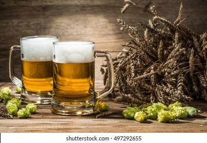 Two mugs of beer on table with hop and wheat in empty wooden background