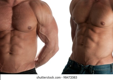 Two muscular male torso of bodybuilder on white background