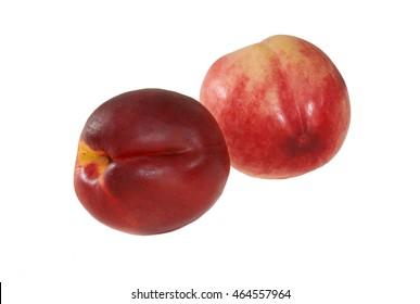 Two nectarines on white background