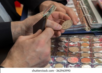 Two numismatists examines  collection of coin