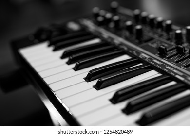 Two octaves electronic musical keyboard synthesizer close-up. Black and white
