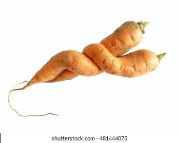 Two odd shaped carrots isolated on white background (clipping path included)