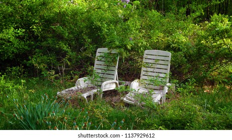 Two old lounge chairs in the woods.